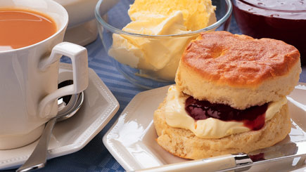 Afternoon Tea And Vineyard Tour For Two At Wroxeter Roman Vineyard