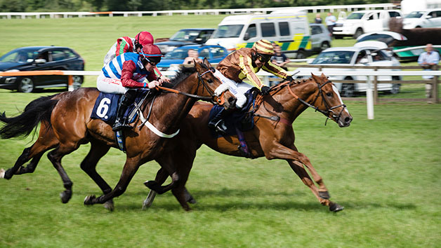 Horse Racing Day At Sedgefield Racecourse For Two