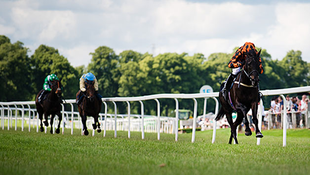 Horse Racing Day At Lingfield Park For Two